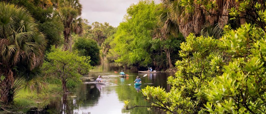 Kayaking through the Palm Beaches in Florida is a great adventure.
