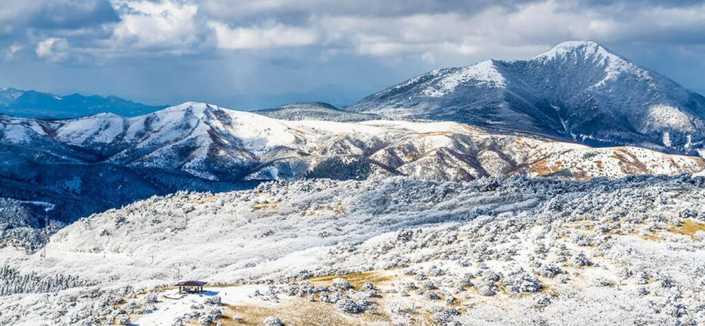 Winter in Japan - Crystal Snow on Mount Aso
